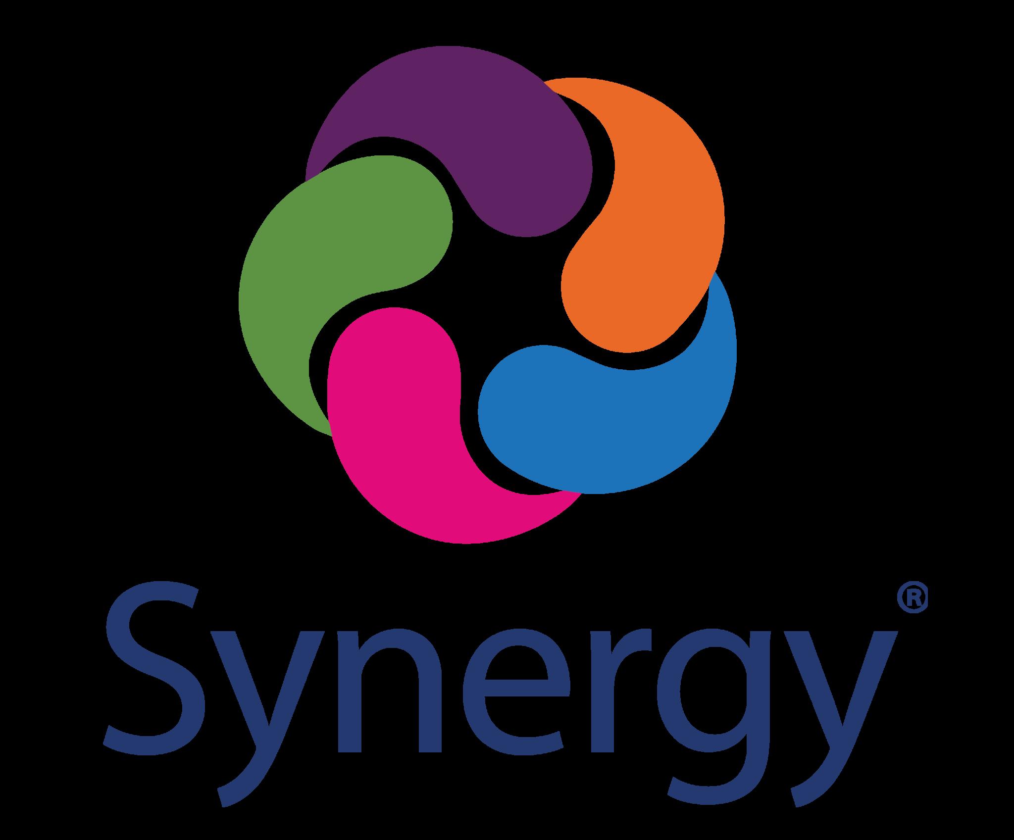Synergy Logo 2019 VERTICAL