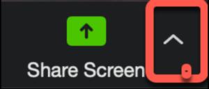 Zoom Screen Share Menu
