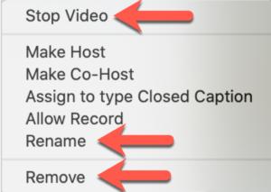 Zoom - Stop video Rename Remove