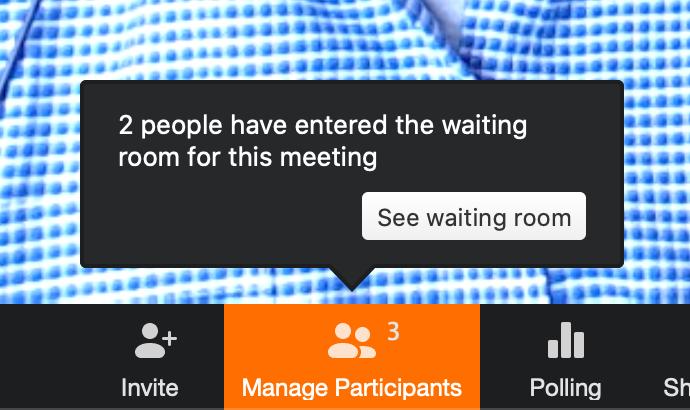 ZOOM - Waiting Room Alert